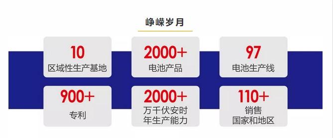 携手二十载,风华再前行--理士国际迎来成立20周年(图2)